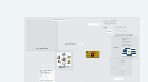 Mind Map: OVA