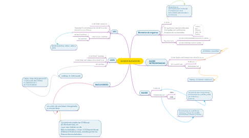 Mind Map: ÁCIDOS NUCLEICOS