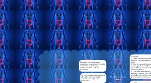 Mind Map: Secreção do intestino grosso