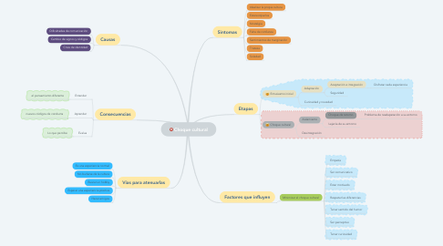 Mind Map: Choque cultural