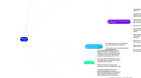Mind Map: PRUEBA DE TESTIGOS