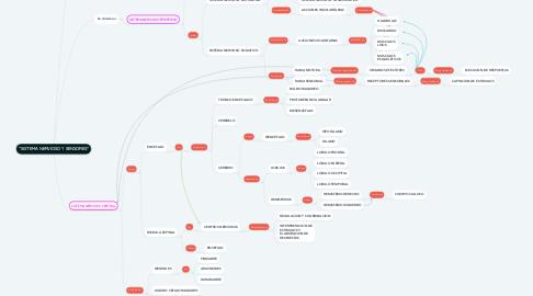"Mind Map: ""SISTEMA NERVIOSO Y SENSORES"""