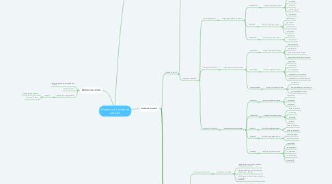 Mind Map: Modelos de Calidad de software