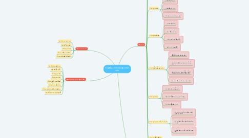 Mind Map: Chương trình đào tạo nhân viên