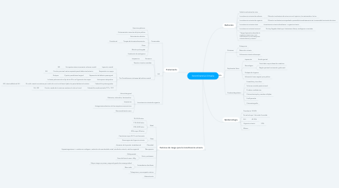 Mind Map: Incontinencia Urinaria