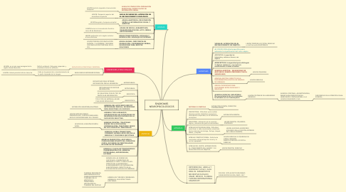 Mind Map: SÍNDROMES NEUROPSICOLÓGICOS