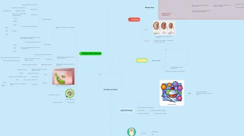 Mind Map: CITOMEGALOVIRUS