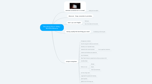 Mind Map: Decoding Silicon Valley - Michelle Messina