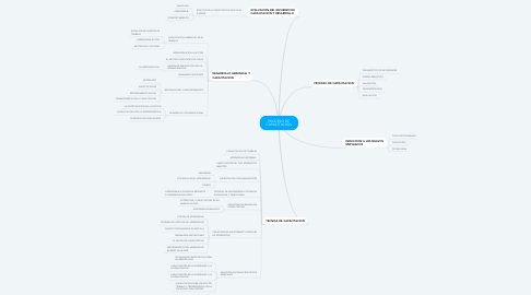 Mind Map: PROCESO DE CAPACITACION