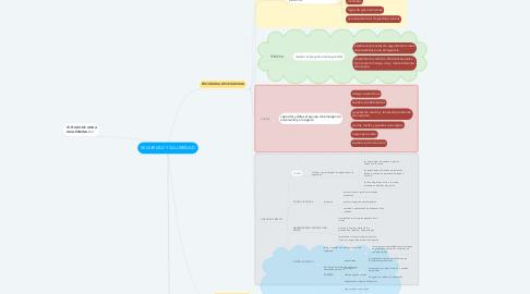 Mind Map: SEGURIDAD Y SALUBRIDAD