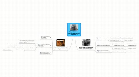 Mind Map: План реабилитации людей с девиантным поведением