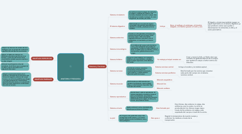 Mind Map: ANATOMIA Y FISIOLOGIA