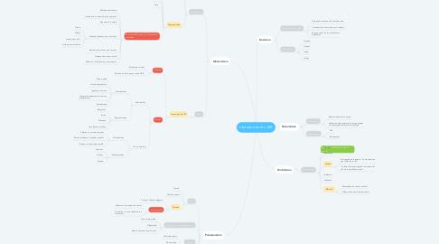 Mind Map: Literatura en el s. XIX