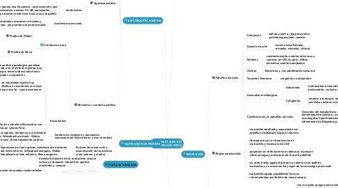 Mind Map: APARATO AUDITIVO EXPLORACIÓN FÍSICA