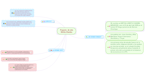 Mind Map: Proyecto  de vida Mirtha Chamba