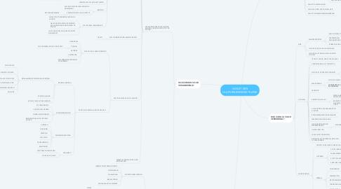 Mind Map: VANUIT EEN HULPVERLENINGSSITUATIE