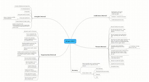 Mind Map: InDigital SWOT