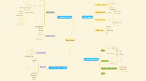 Mind Map: Examen Parcial