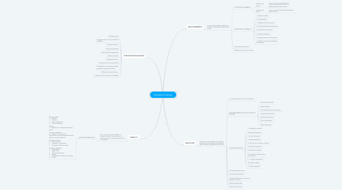 Mind Map: SEGUNDO PARCIAL
