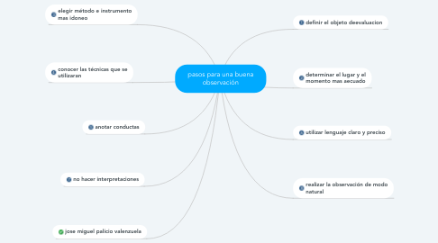 Mind Map: pasos para una buena observación