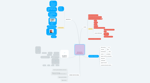 Mind Map: RECURSOS DISPONIBLES