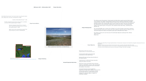Mind Map: Water replenishment Tylihul River and Tylihul Estuary