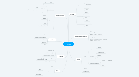 Mind Map: Floresta
