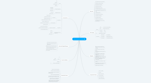 Mind Map: W ou le souvenir d'enfance