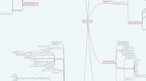 Mind Map: Mecanismo de progresión de las glomerulopatías