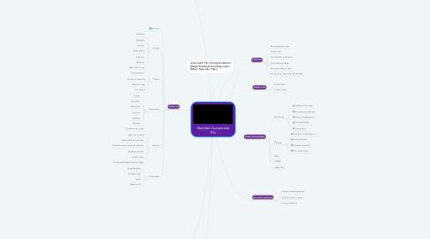 Mind Map: Realidad Aumentada RA