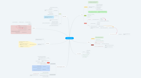 Mind Map: Internet revolutie