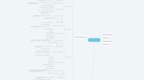 Mind Map: Линейка продуктов