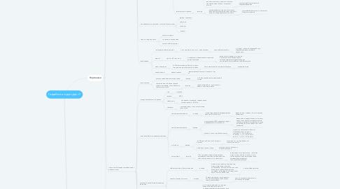 Mind Map: Разработка структуры LP