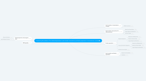 Mind Map: Examining the evidence: The relationship between cash transfer interventions and family separation in humanitarian contexts