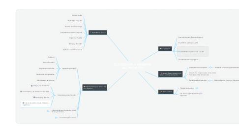 Mind Map: EL PERSONAL Y AMBIENTE DEL PROYECTO