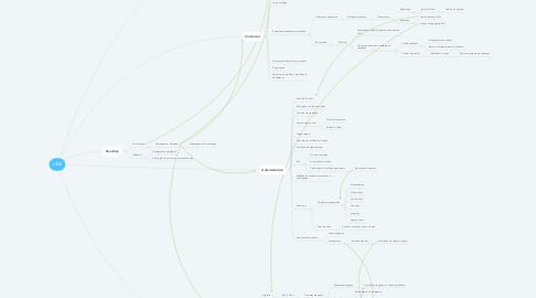 Mind Map: L360