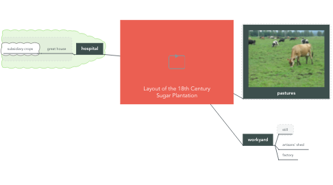 Mind Map: Layout of the 18th Century Sugar Plantation