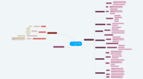 Mind Map: Le marché de la lessive