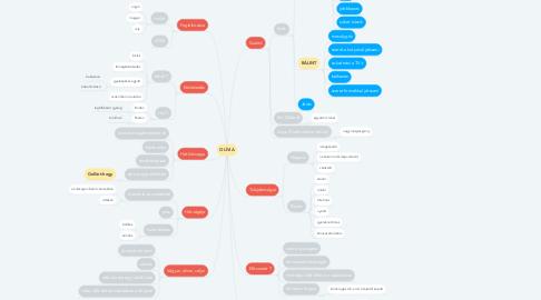 Mind Map: OLÍVIA
