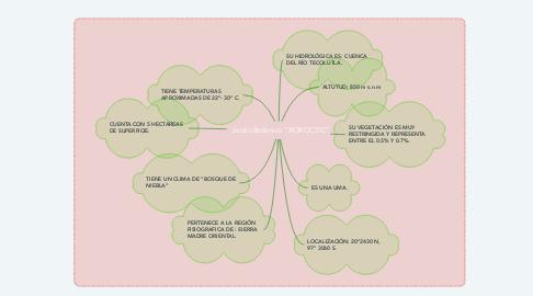 """Mind Map: Jardín Botánico """"XOXOCTIC"""""""