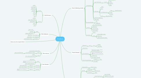 Mind Map: Escritório de Contabilidade
