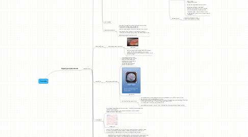 Mind Map: Роснефть