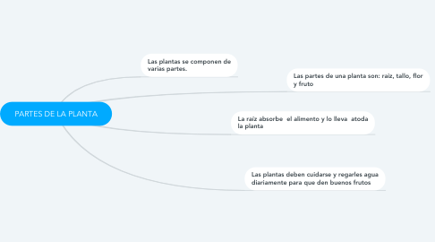 Mind Map: PARTES DE LA PLANTA