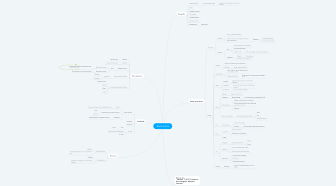 Mind Map: Medio Oriente
