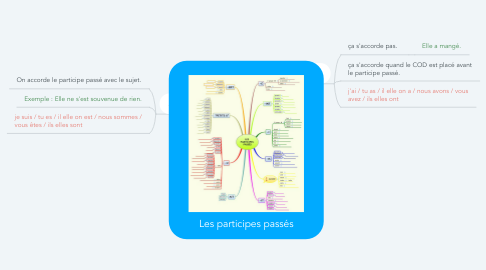 Mind Map: Les participes passés