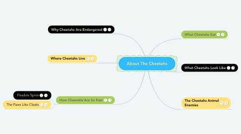Mind Map: About The Cheetahs