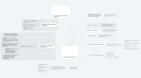 Mind Map: SELECCION DEL MERCADO