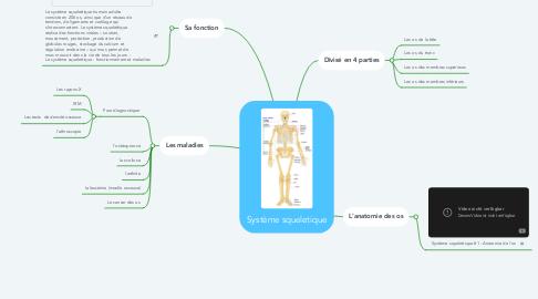 Mind Map: Système squeletique