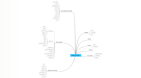 Mind Map: Mechelse veilingen