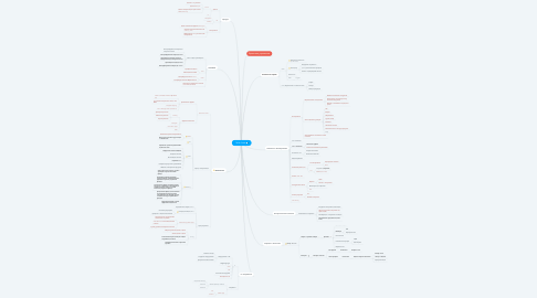 Mind Map: РУСМОДА OMNI Chn